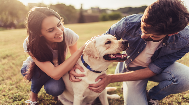 having a pet makes you happier