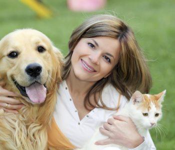 Pet Care Franchise Service02