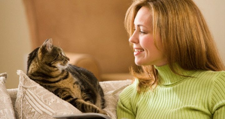 What studies and research say about pet school class